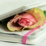 poesía-juegos-florales